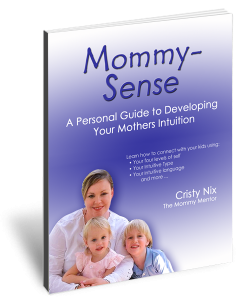 Mommy-Sense book by Cristy Nix, Intuitive Mommy Mentor