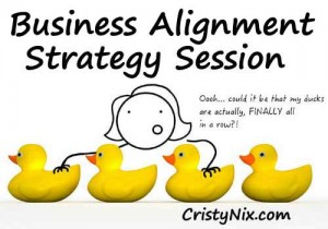 Business Alignment Strategy Session with Cristy Nix